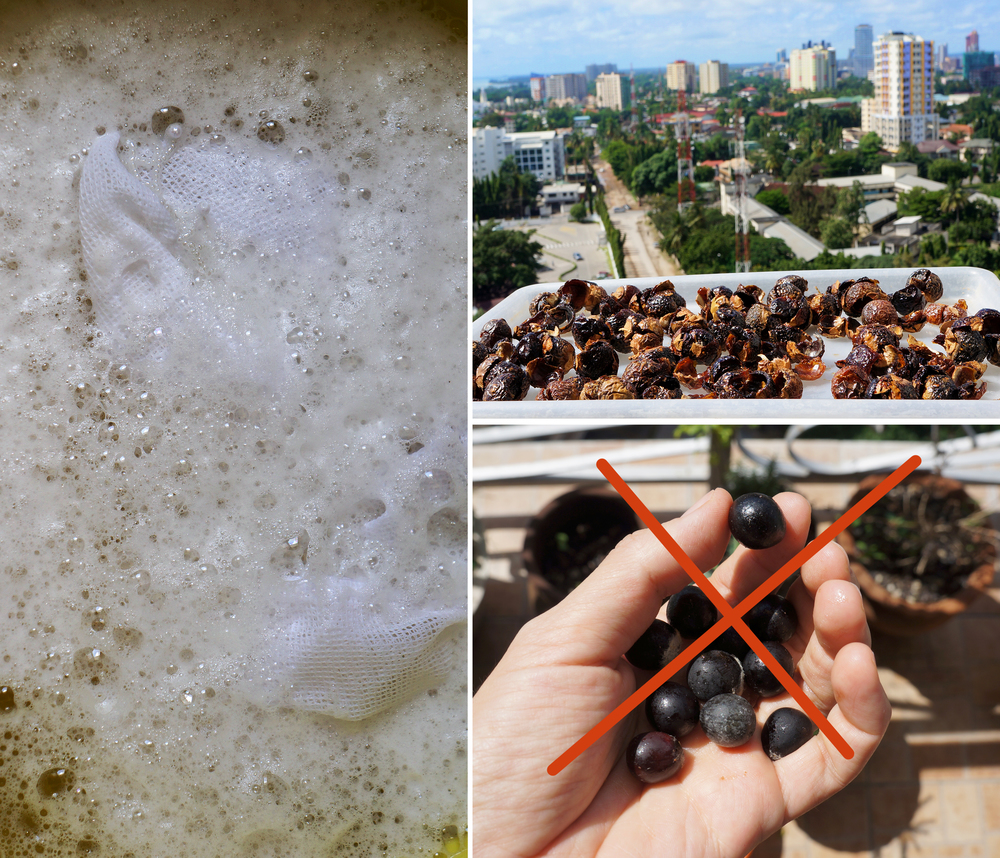 Left: Soapnut Liquid Foamy water      Top Right: Sun-drying shells      Bottom Right: Remove all seeds first