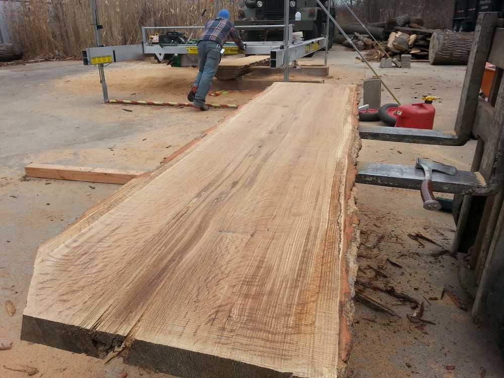 Live Edge Slabs Tree Purposed Detroit Michigan Live