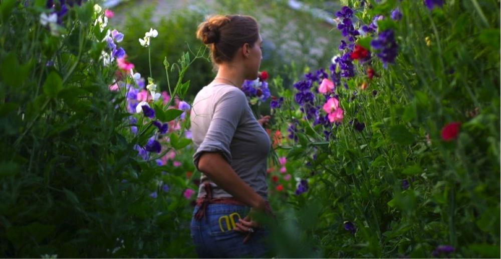 Gardener Sweet Pea Hedges web.jpg