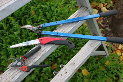 Bypass hand pruners, folding hand saw and lopping shears