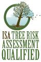 ISA+risk+logo.jpg