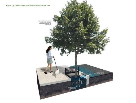Storm Water Costs/Demands Reduced With Street Tree Systems