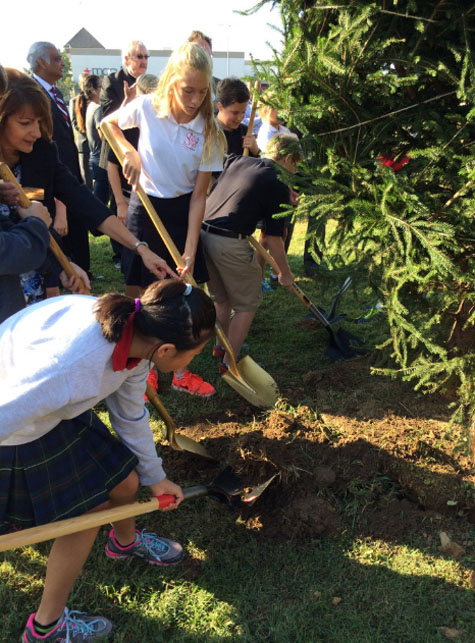 People of All Ages Enjoy Planting Trees Together  Green for good project at St. Margaret Mary Elementary School / LouisvilleKY.com   https://dirt.asla.org/2017/10/06/the-public-health-case-for-investing-in-urban-trees/