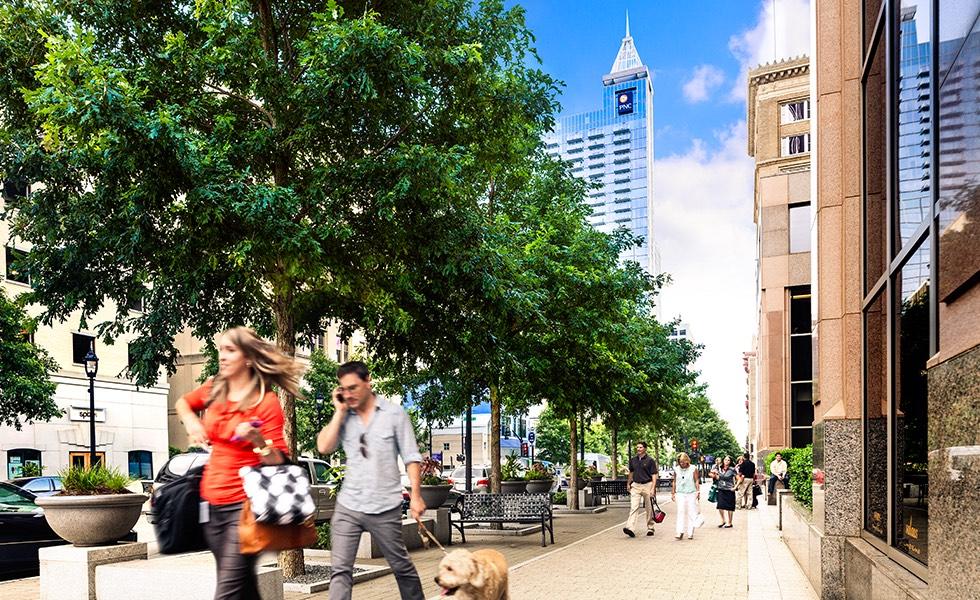 Street-scape_peds_dog_street_trees.jpg