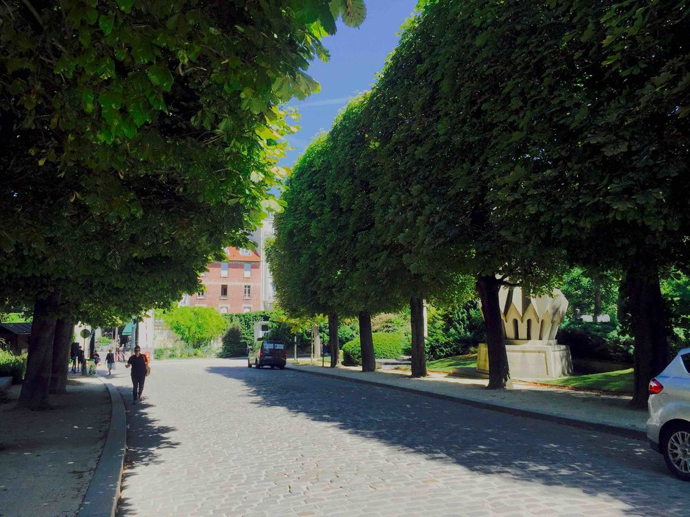 Parisian Streetscape, Regular Pruning Keeps Chestnut Trees in Scale
