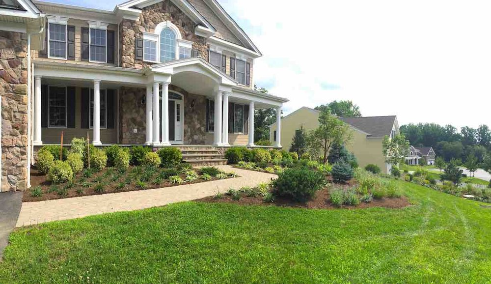 Ecological Planting: Many Natives, Drought Tolerant and Reduction of Lawn