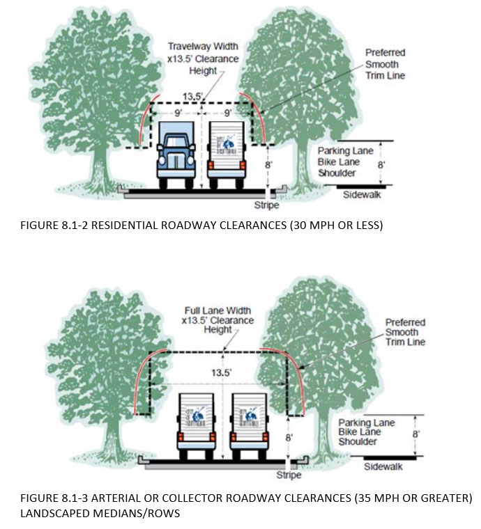 Street Tree Pruning Guidelines - Safety For Pedestrians, Vehicles and Trees