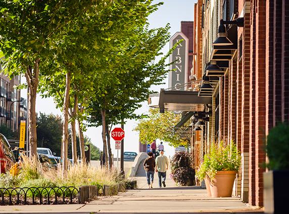 Street-scape_underplanted_street_trees.jpg