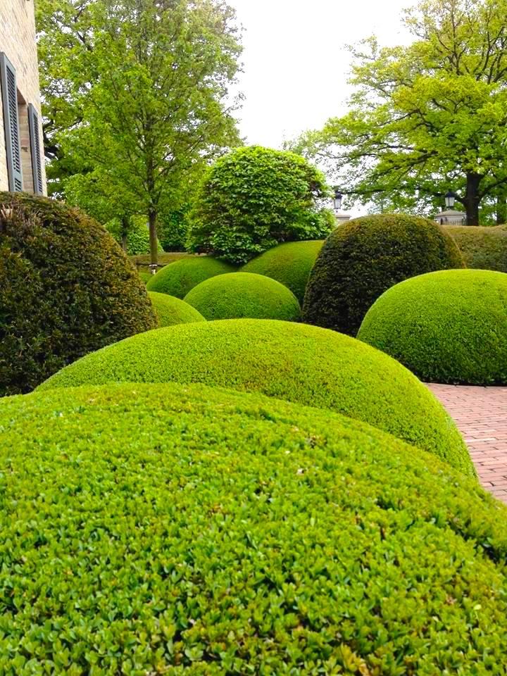 King Garden Designs