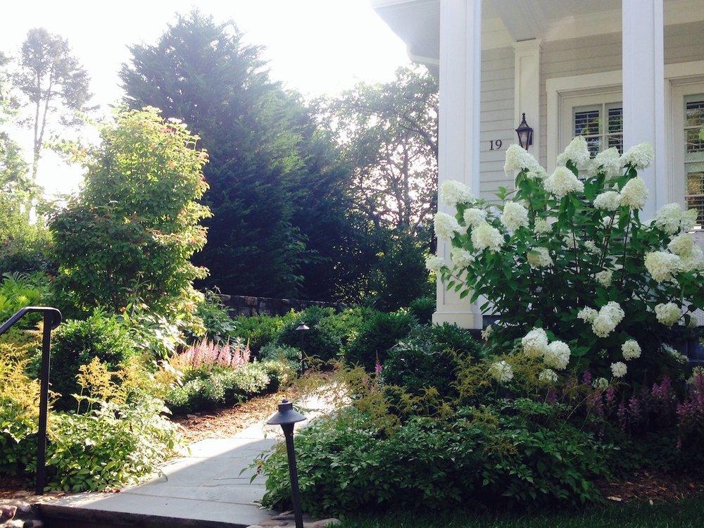 Garden_Walk_Hydrangeas_Boxwood_Astilbe_Summer.jpeg