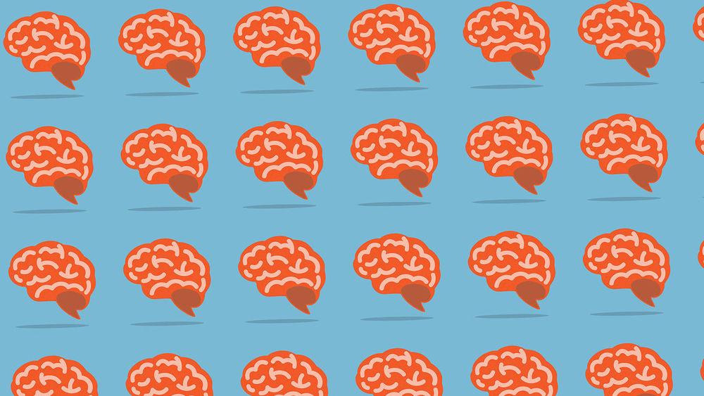 Brain,vector: CHAIWATPHOTOS via  Shutterstock