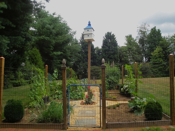 Vegetable_garden.JPG
