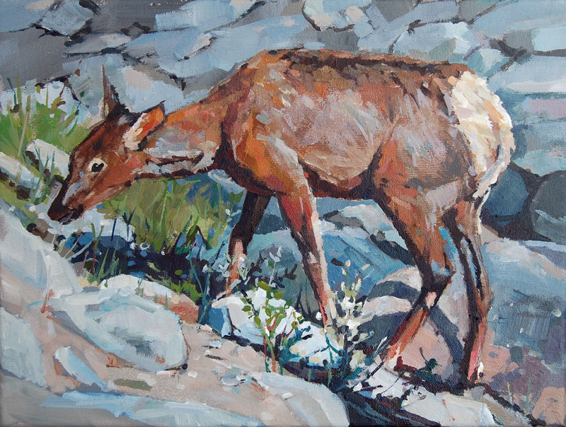 Wapiti 9x12 Mountain Galleries, Jasper AB