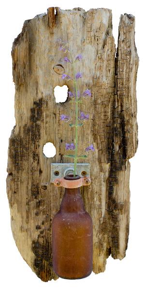 Nantucket Driftwood Flower Vase Nantucket Salt Driftwood Art