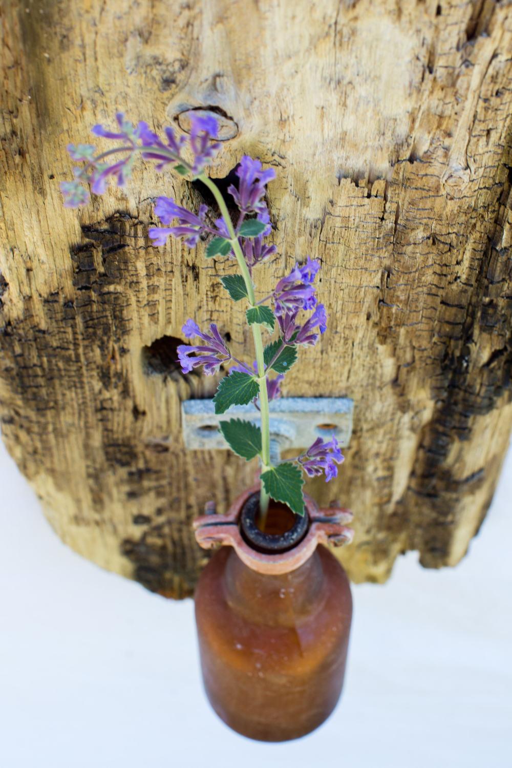 Driftwood Flower Vase