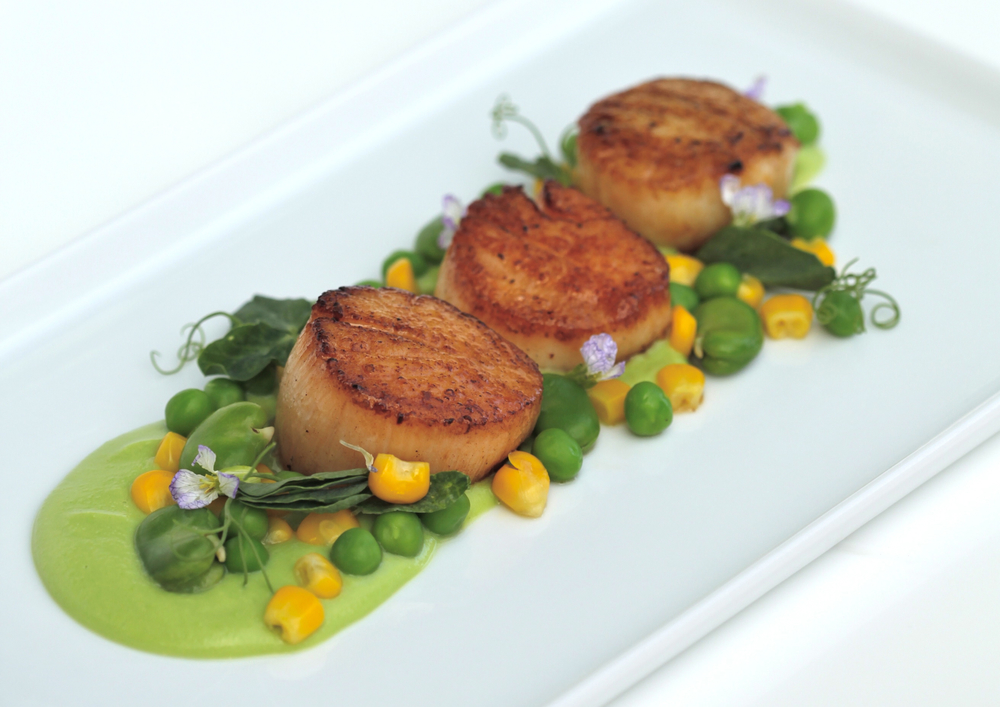 Scallops with Succotash and Sweet Pea Sauce