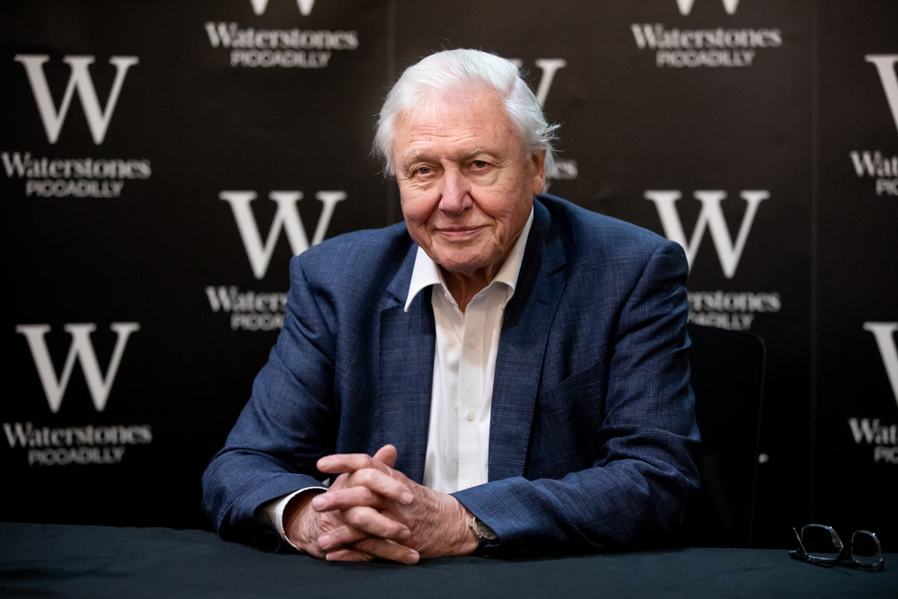 Sir David Attenborough signs copies of his recent book 'Life on Earth 40th Anniversary Edition' at Waterstones Piccadilly. October 2018 - London, UK.