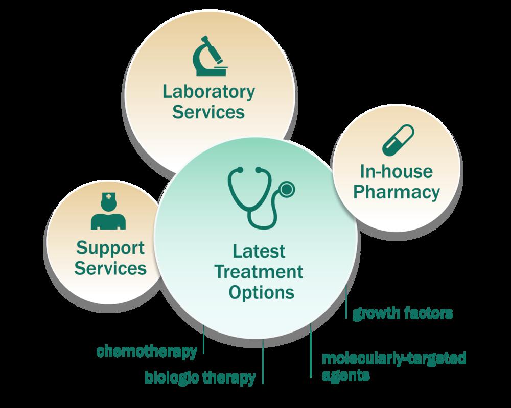 Cancer treatment services at MDSOG