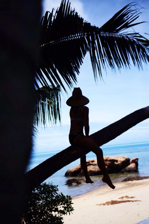 Dreamof Paradise