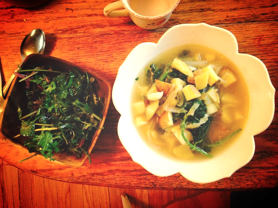 Wild Salad and Irish Nettles Soup- the perfect lunch!