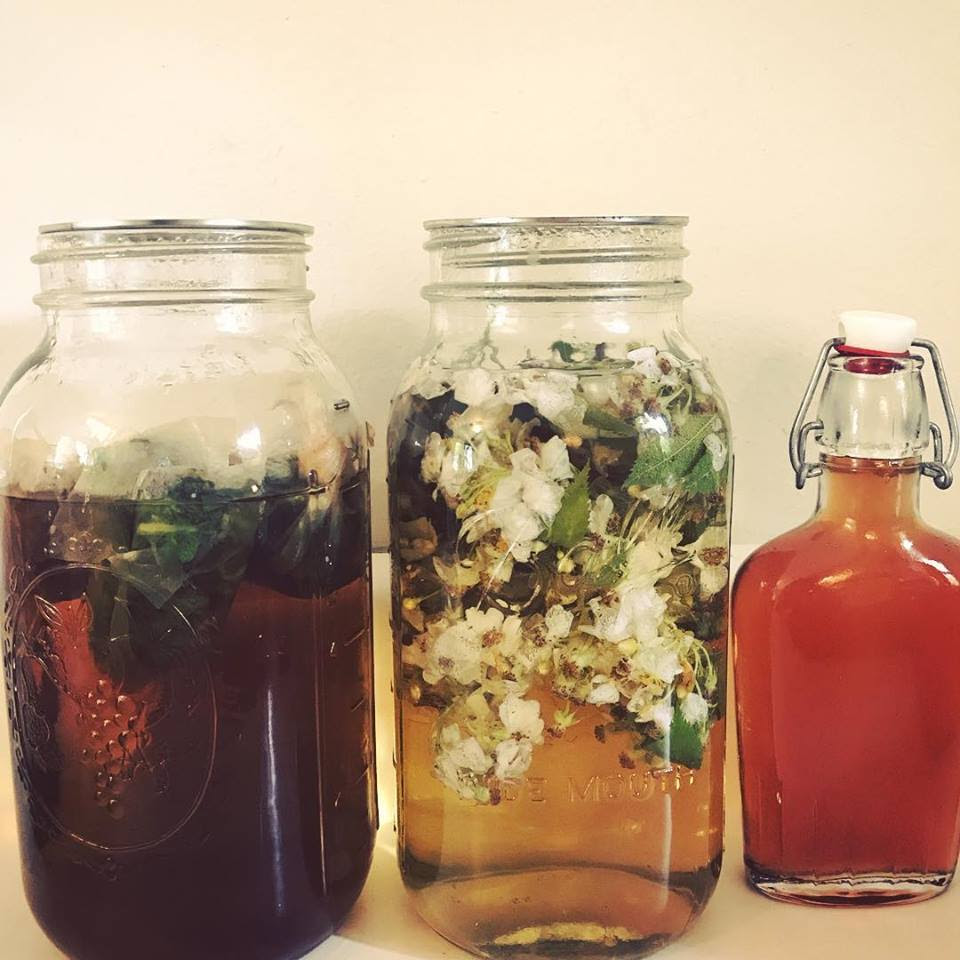 Left to Right: Lemon Balm Kombucha, Wild Rose Soda, Rose Simple Syrup