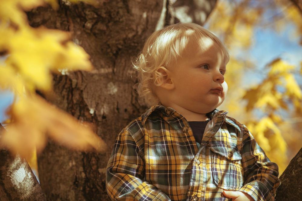 SqSpPort-20121028-James Family-2725.jpg
