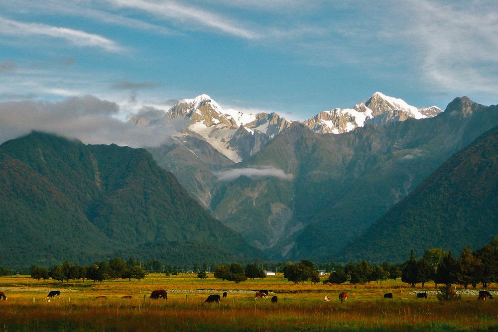 SqSpPort-NZ-071.jpg