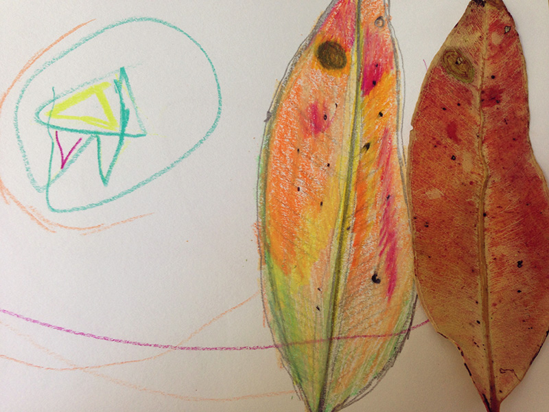 Collecting leaves and drawing - one of our art projects.