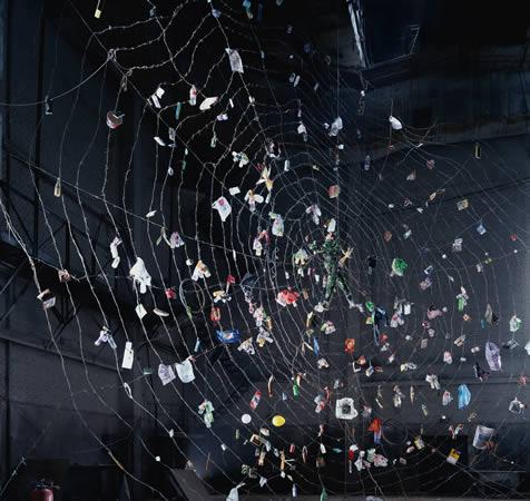 Poisonous Spider, 170x180cm, 2005