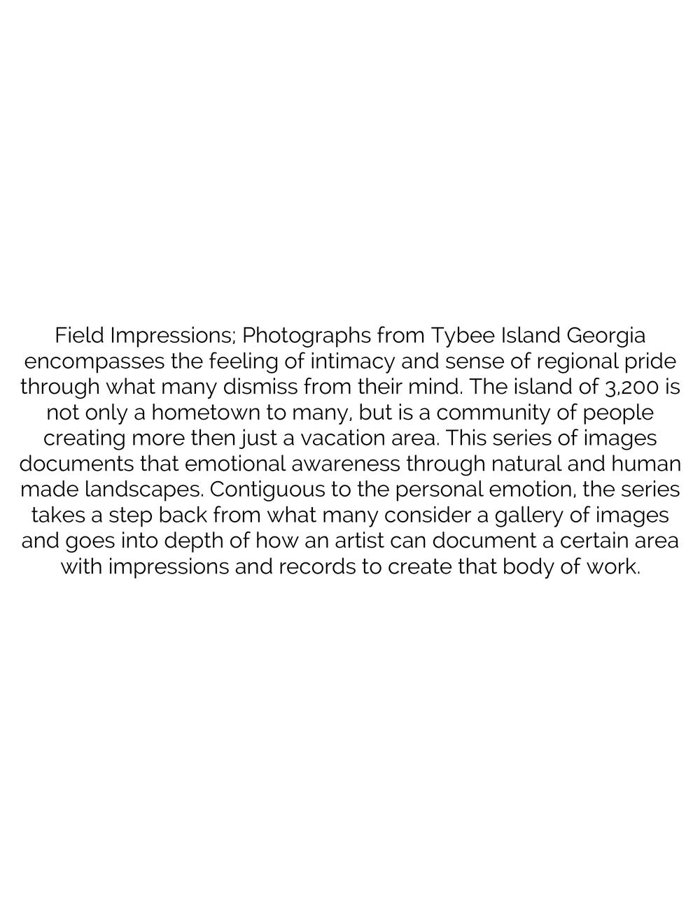 Field Impressions-Artist Statement.jpg