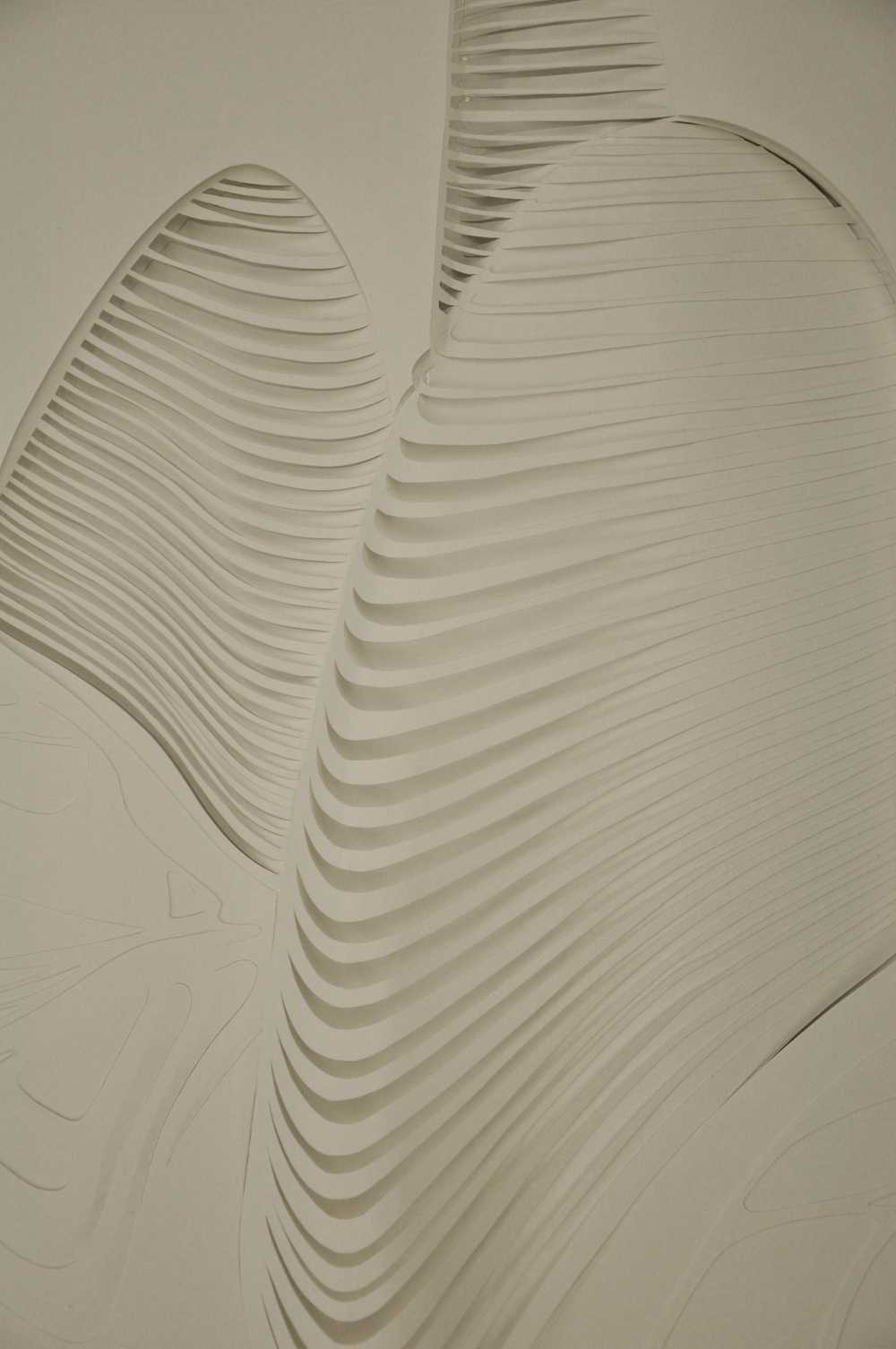 paper relief model zaha hadid architects guillermo l fortuño