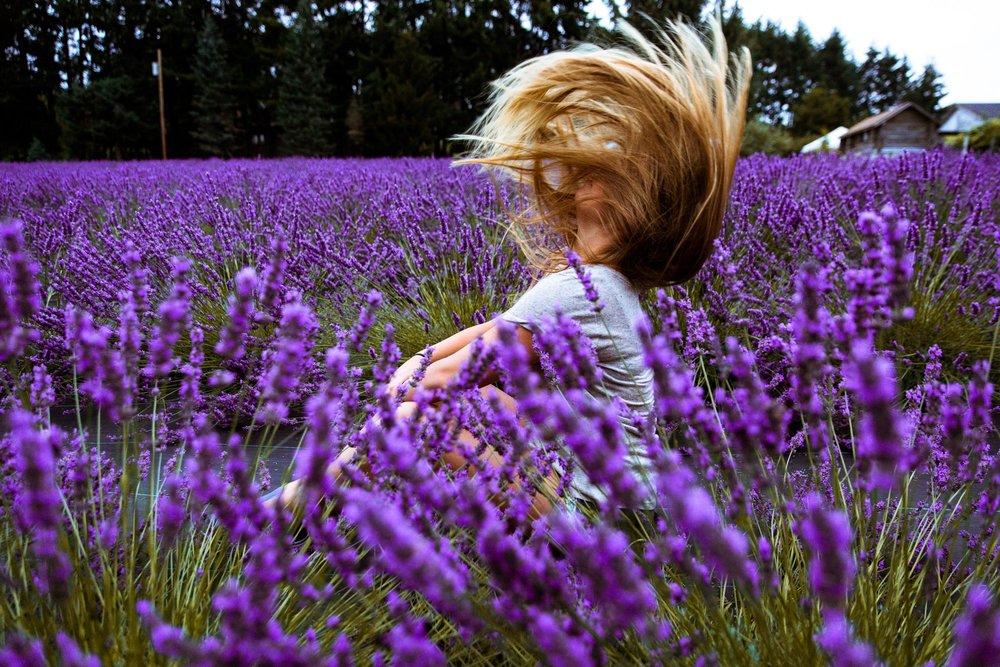 Endless fields of purple - I had a lot of fun roaming the aisles of lavender and taking photos of my lovely friend. I may have gotten stuff by a bee while taking this photo, but it was a great day nonetheless.