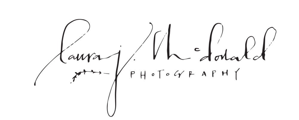 primary logo redesign for my aunt's photography business
