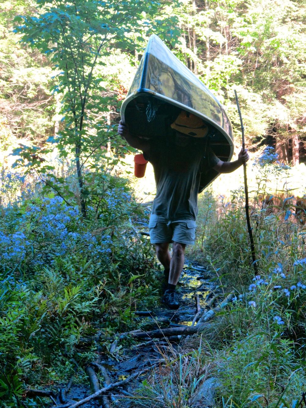 Portaging the canoe over muddy lowlands: Chris Scerri