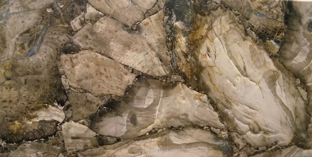 White Petrified Wood - Leather Finish