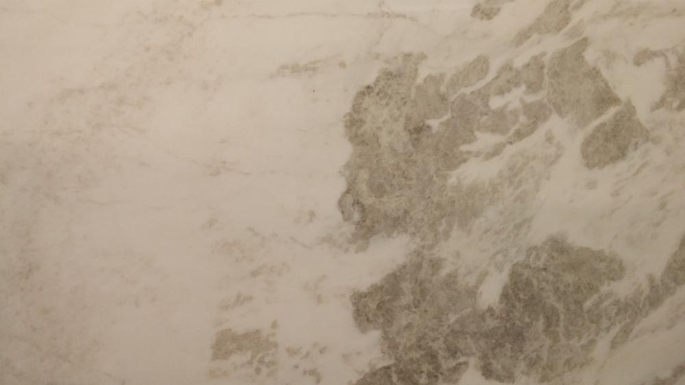 Rhino_White_close-up.jpg