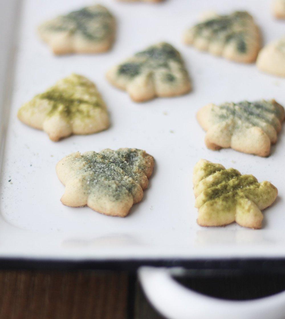 Paleospritzcookie
