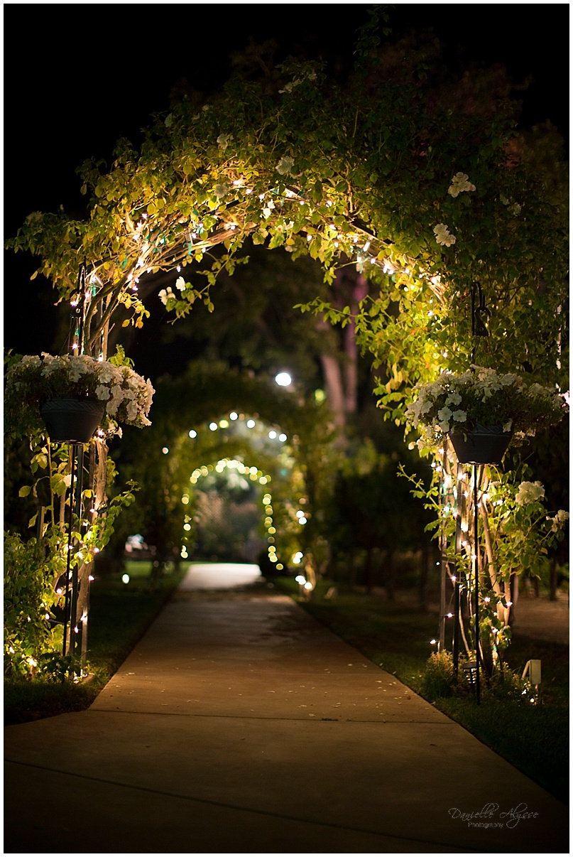 150816_blog_sacramento_wedding_photographer_danielle_alysse_photography_scribner_bend_vineyard_montgomery_037.jpg