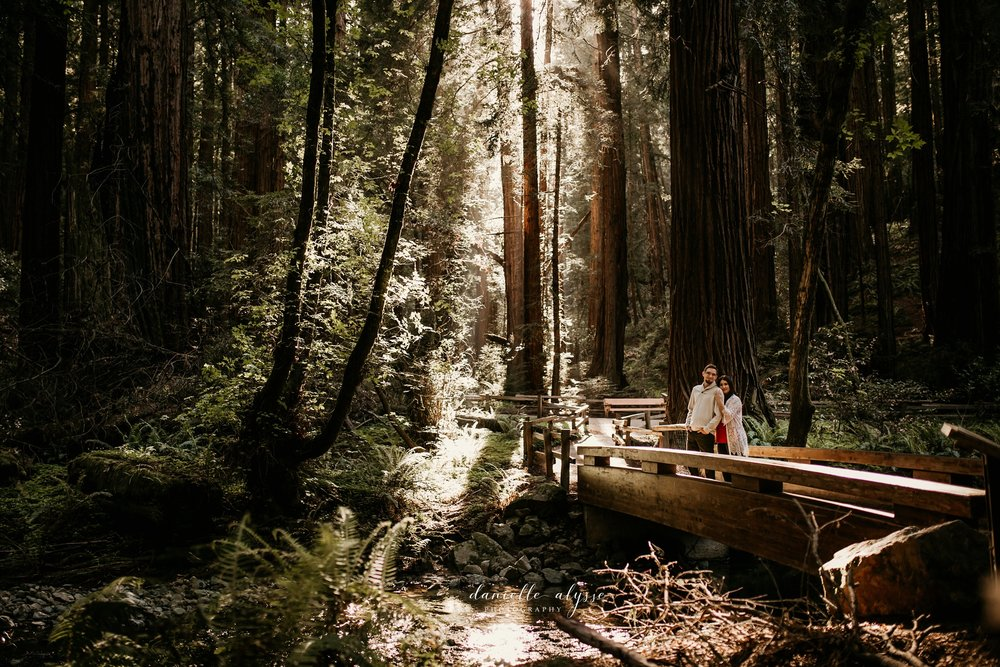 180503_engagement_bianca_muir_woods_mill_valley_danielle_alysse_photography_bay_area_photographer_blog_9_WEB.jpg