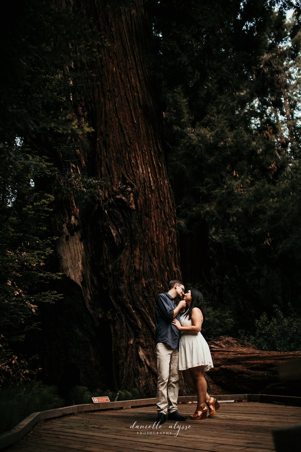 180503_engagement_bianca_muir_woods_mill_valley_danielle_alysse_photography_bay_area_photographer_blog_68_WEB.jpg