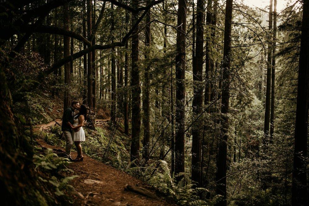 180503_engagement_bianca_muir_woods_mill_valley_danielle_alysse_photography_bay_area_photographer_blog_62_WEB.jpg