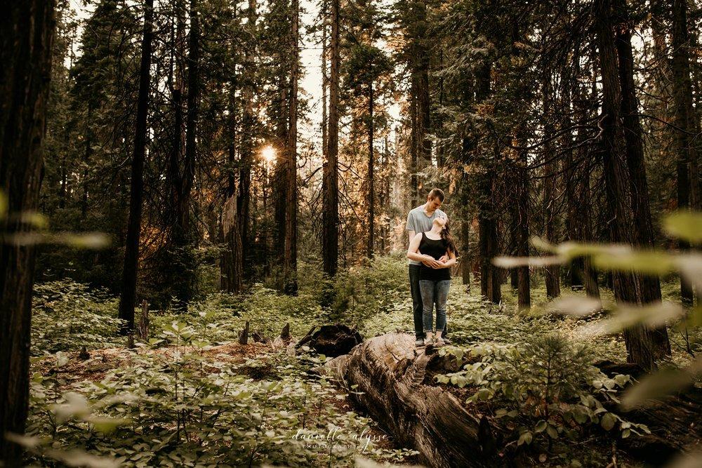 180811_engagement_kathryn_calvaras_big_trees_park_arnold_danielle_alysse_photography_blog_63_WEB.jpg