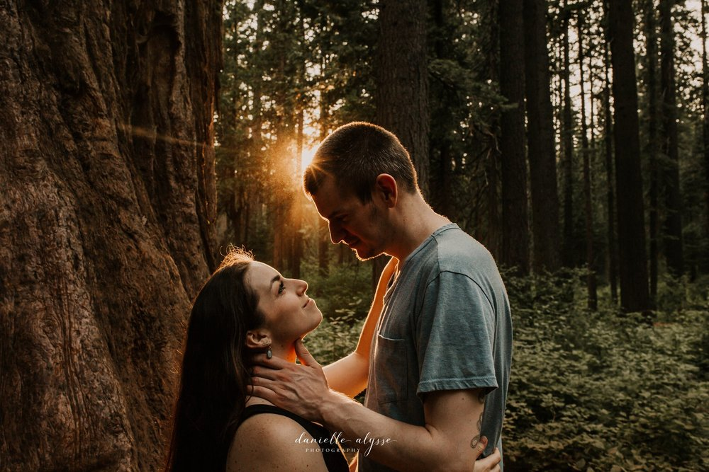 180811_engagement_kathryn_calvaras_big_trees_park_arnold_danielle_alysse_photography_blog_71_WEB.jpg