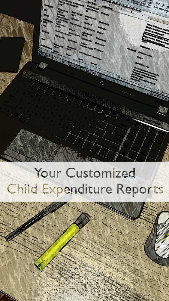 High income child support expense reports