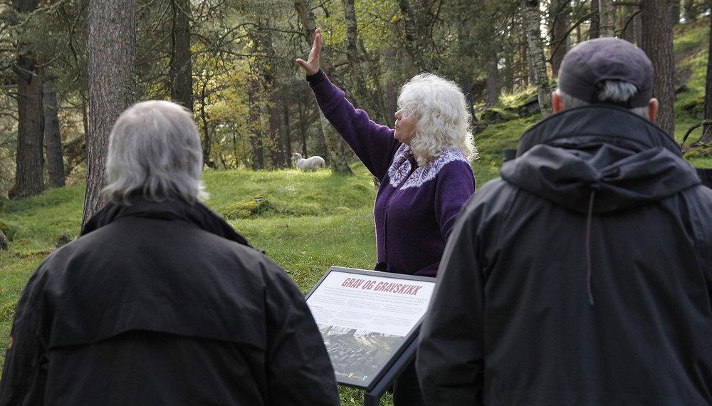 For gravfeltet på Vang er det planer om standardheving med målrettet tilrettelegging og formidling. Foto: Anders Mossing