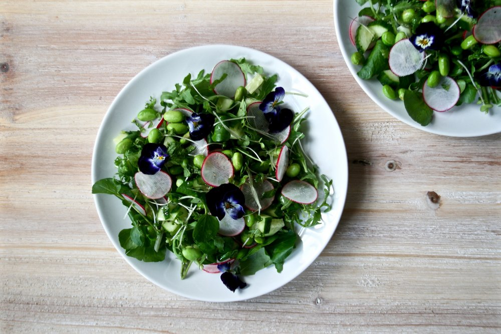 Green Summer Salad with Violets and Radishes | The Herb Diaries