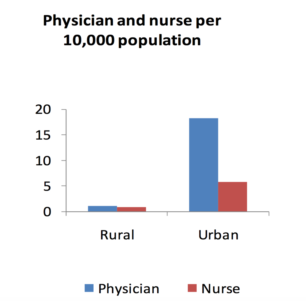 Physician and nurse per 10,000 population (Role of 'Village Doctors')