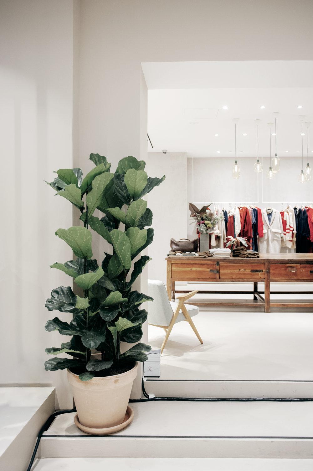 AV_Store_Antwerp_credit_Oona_SMET_8.jpg