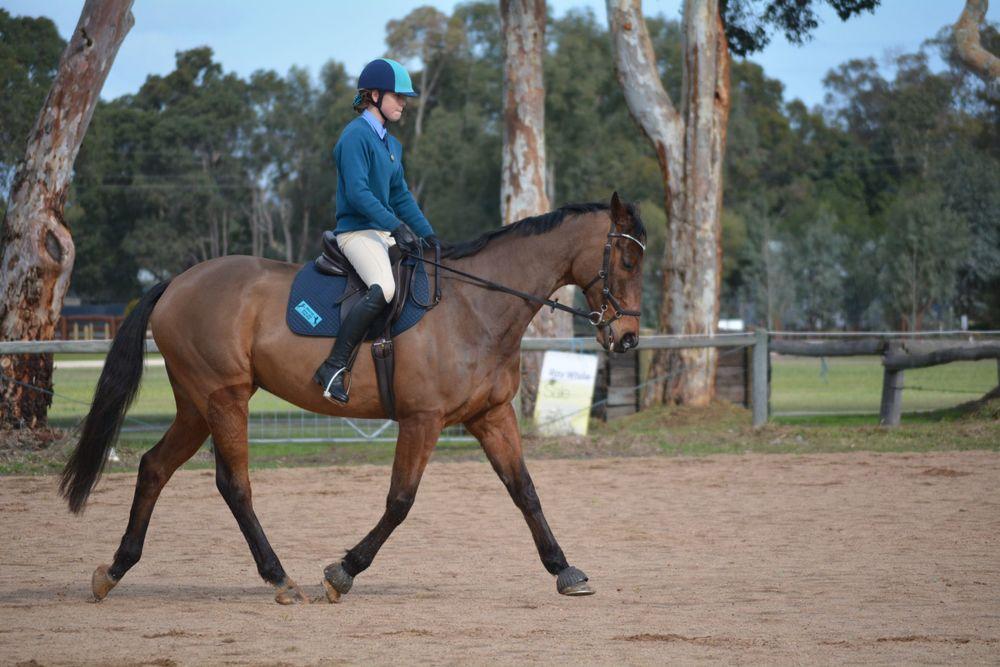 Horse rider copy.jpg
