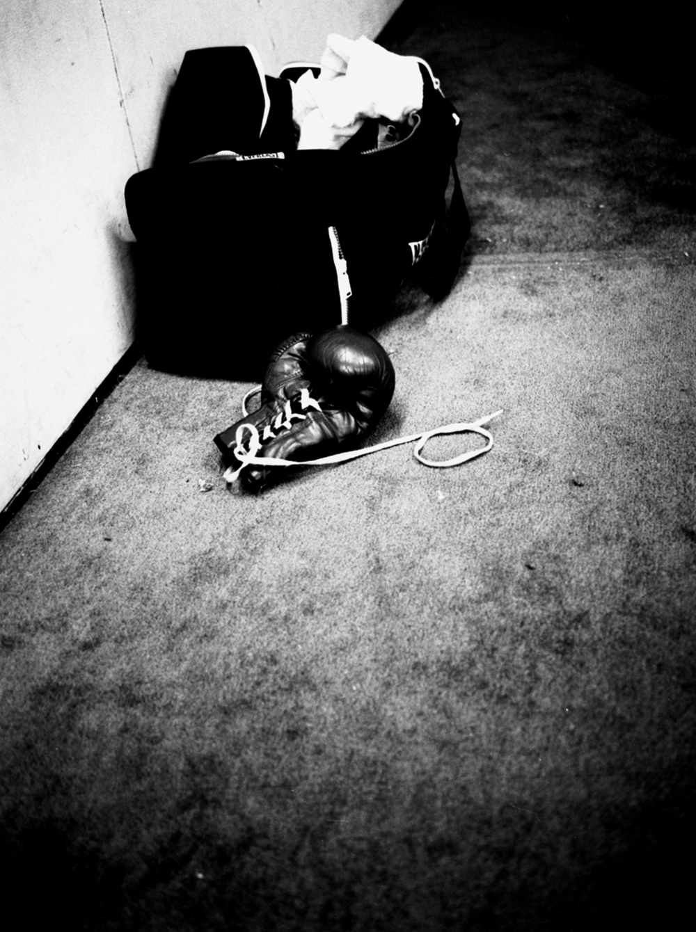 boxinglove.jpg